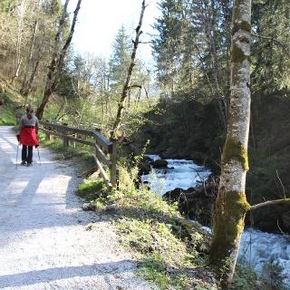 Spaziergang durch die Talbachklamm