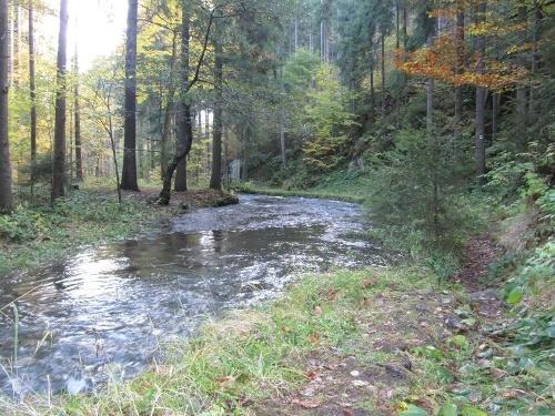 Im Pöhlbachtal bei Königswalde