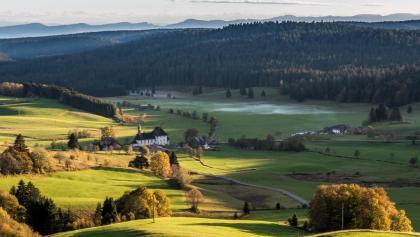 Ibacher Hochtal mit Alpensicht