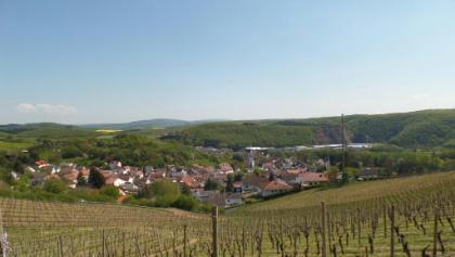 Aussicht auf Bockenau
