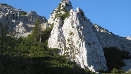 Alter Fritz - Klettergarten an der Barthlmahd Hochstaufen Südseite