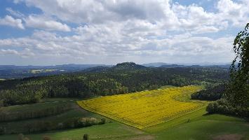 Foto Aussicht von der Ostseite des Pfaffensteins in Richtung Gohrisch