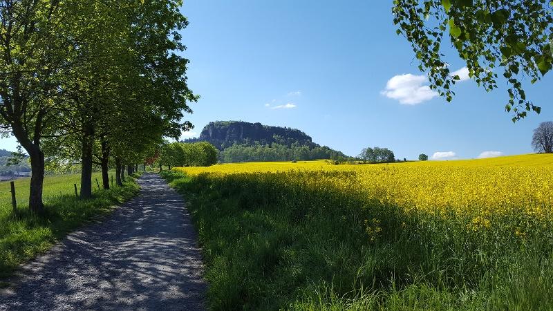 Foto Schon der Weg zum Pfaffenstein ist wunderschön, besonders im Frühjahr