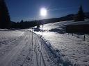 Rundloipe Jungholz, Langenschwand