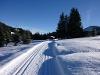 Richtung Wildfütterung  - @ Autor: kUNO  - © Quelle: Tourismusverband Tannheimer Tal