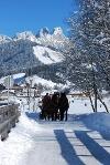 Kutschfahrt im Tannheimer Tal  - @ Autor: kUNO  - © Quelle: Tourismusverband Tannheimer Tal