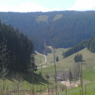 Doldenhof, im Hintergrund Aufstieg zum Brend