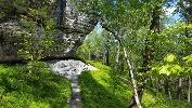 Foto Der idyllische Goldsteig durch den Kleinen Zschand