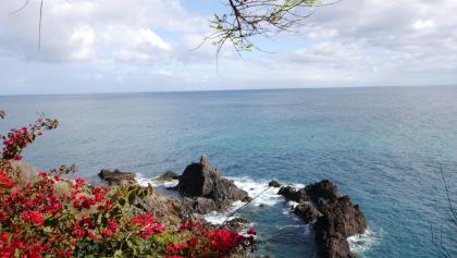 Blick auf die Bucht von Funchal
