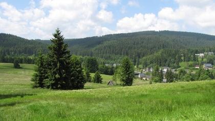 Auf dem Kammweg bei Wildenthal