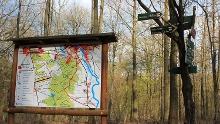 Wanderung von Beucha durch den Planitzwald