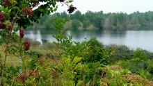 Naturlehrpfad Grabschützer See