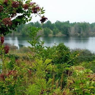 Grabschützer See