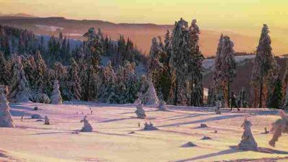 Winter in Hohegeiß