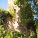 Burgruine Altwolfstein
