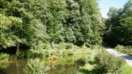 Der Bellachini-Weiher im Tal des Altbaches.