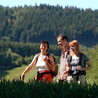 Den Teutoburger Wald im Blick: Wandern im Münsterland