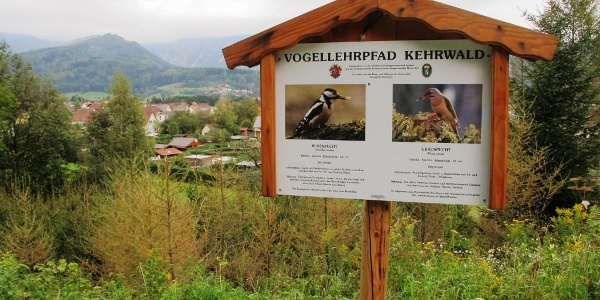 Vogellehrpfad Kehrwald