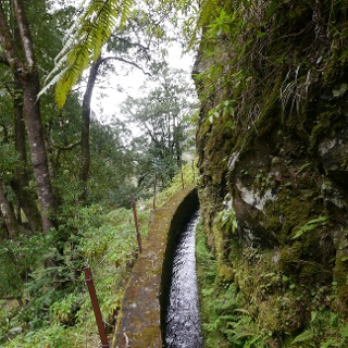 Auf der Levada da Serra do Faial
