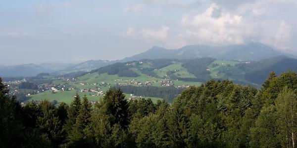 Blick in den Vorderwald oberhalb von Müselbach