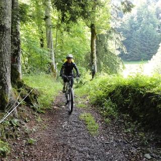 Mountainbiker im Mellental
