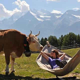 Hannigalp Frau mit Kuh