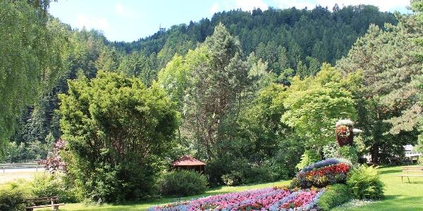 Blumenpfau in Mönichwald