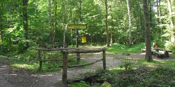 Bald erreichen wir den Natur- und Waldlehrpfad Poppental.