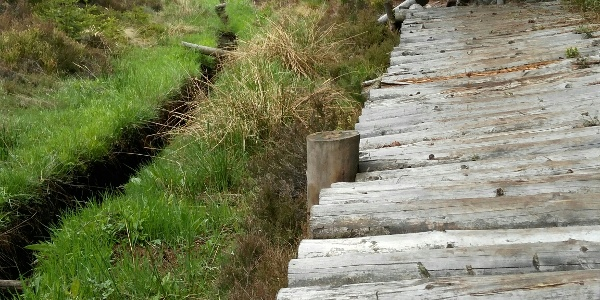 Zpevněné lávky na chodníčku podél Blatenského náhonu.