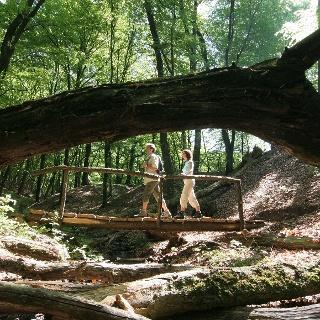 Über den Tiefenbach führen uns zahlreiche Brücken