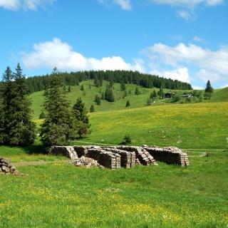 Blick über Wiesen und Weidfelder auf die Krunkelbach-Hütte bei Bernau