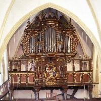 Alexanderkirche_Orgel