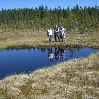 See - Eben - Hochmoor oberhalb der Stoffhütte