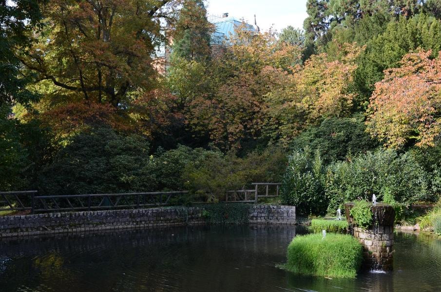 Schwarzwald - Radweg Etappe 2 Gernsbach - Baiersbronn Obertal