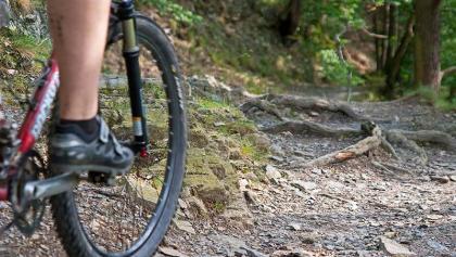 Trail bei Stecklenberg.