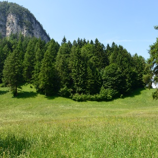 Forests and idyllic meadows in the Trudner Horn Nature Park