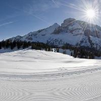 Winterwandern und Langlaufen auf der Plätzerwiese
