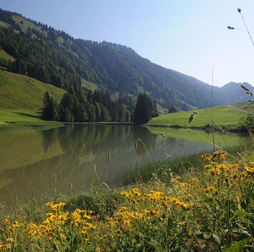 Balderschwang Im Allgäu: Radtour Ab Balderschwang: Lecknertal