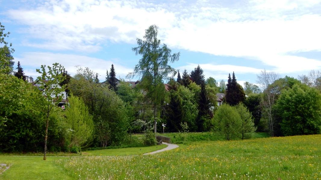 Waldachtaler Rundwanderweg 4 / Seniorenweg