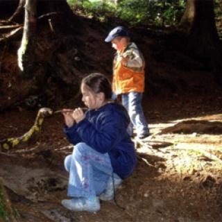Oberschwenden zur Kinderheilstätte, Scheidegg