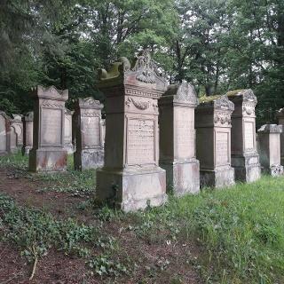 Alter jüdischer Friedhof von Freudental