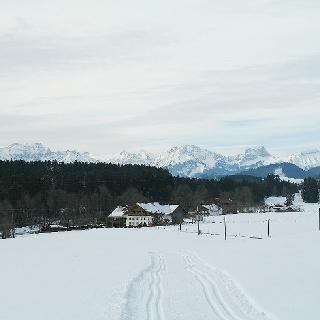 Blick auf Reuthen und die Kulisse der Thannheimer Berge