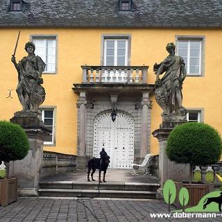 Wasserburg Gudenau
