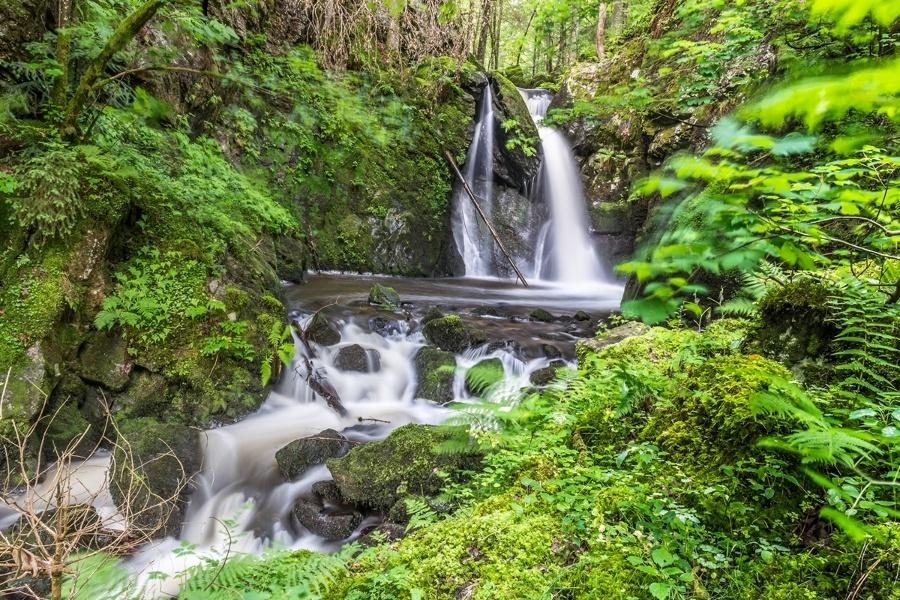 Herrischried: Murgtalpfad im Hotzenwald