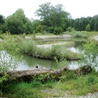 Naturnah gestaltete Landschaft