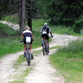 Mountainbiken in Langenwang