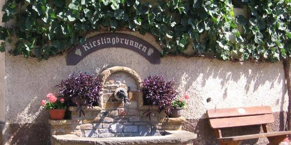 Kirschroth Rieslingbrunnen