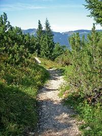 Der Schmugglersteig in Schattwald © Tourismusverband Tannheimer Tal