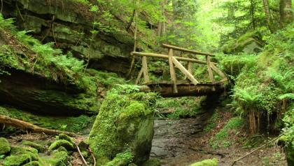 Brücke in der Wolfsschlucht