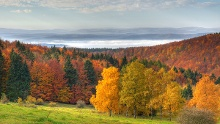 Naturpark-Route Thüringer Wald